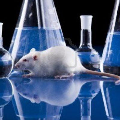 La scienza italiana: non decida la politica a chi dare i soldi per la ricerca